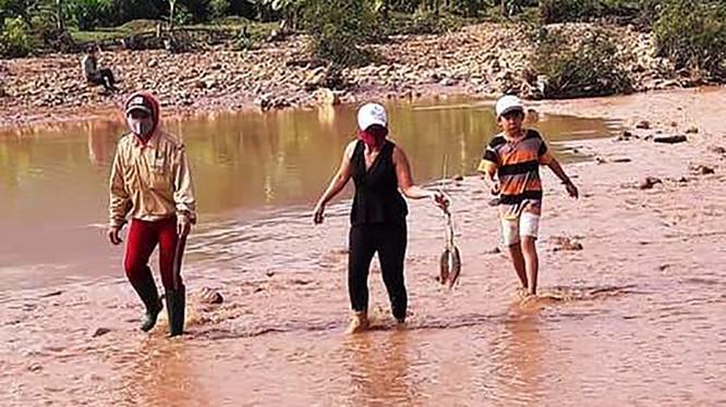 Vỡ hồ chứa khiến lượng lớn bùn non và nước thải xử lý vàng chạy xuống sông. ảnh MT-ĐT