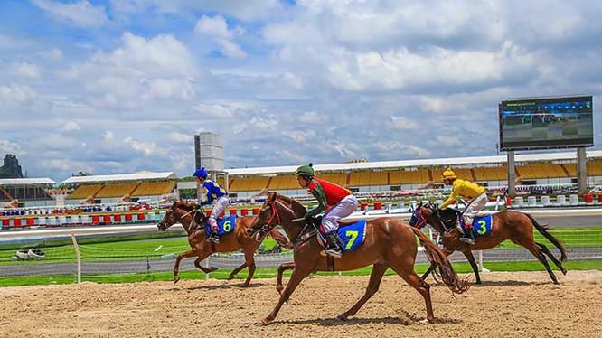 Đà Nẵng đang tìm vị trí để xúc tiến đầu tư Dự án Trường đua ngựa trị giá 200 triệu USD (ảnh http://sporttotovietnam.com)