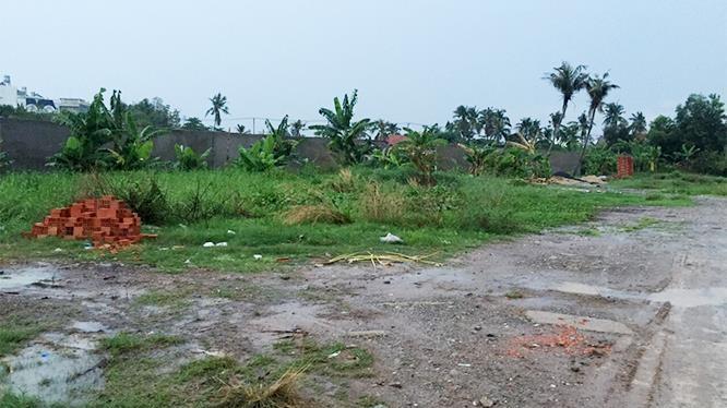 lô đất bị phân lô bán nền trái phép ở Quận 12, TP.HCM.