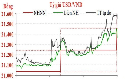 Diễn biến tỷ giá USD/VND trong một năm qua - Nguồn: TNG Holdings Việt Nam.