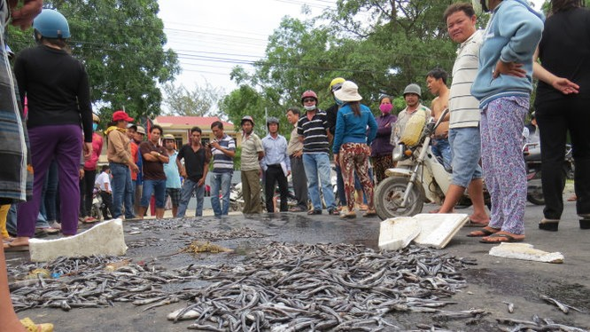 Người dân đổ cá, tôm bị chết ra quốc lộ 1 để phản đối xáng cạp gây ô nhiễm môi trường - Ảnh: D.T.