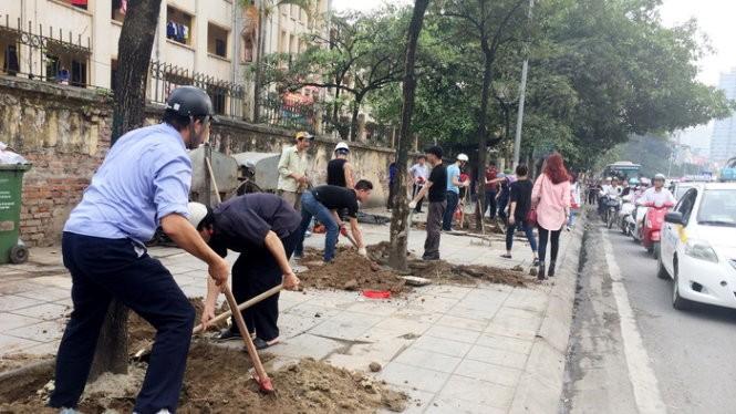Cây xanh trên đường Nguyễn Chí Thanh bị chặt hạ để trồng cây mới hồi tháng 3-2015