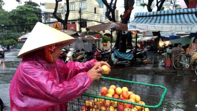 Trái đào có xuất xứ từ Trung Quốc được bày bán tại chợ Nguyễn Tri Phương (TP.HCM) - Ảnh: DŨNG TUẤN