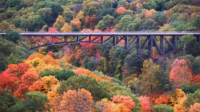 Cây cầu thả mình qua thung lũng núi Bear ở New York độ thu sang