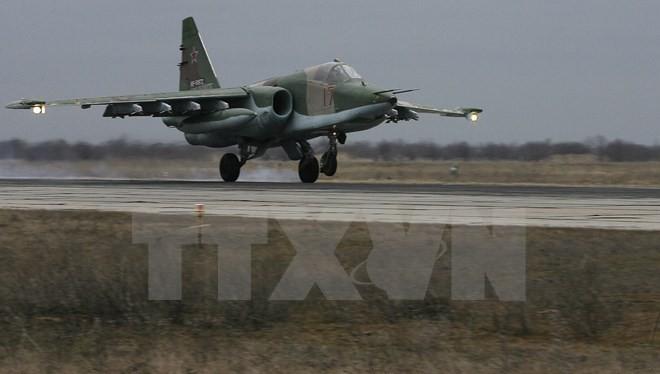 Máy bay Su-25 của không quân Nga. (Ảnh minh họa. Nguồn: AFP/TTXVN)