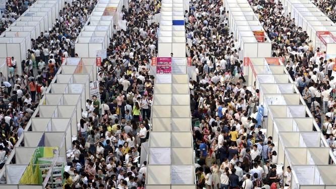 Một phiên chợ việc làm ở Thành Đô, Tứ Xuyên