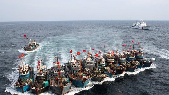 """""""Hạm đội tàu cá"""" là công cụ thâm hiểm để Trung Quốc thực hiện âm mưu độc chiếm Biển Đông"""