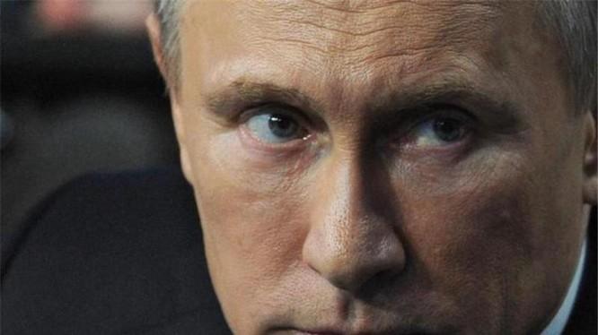 """Tổng thống Nga Putin coi vụ bắn hạ Su-24 là """"cú đâm sau lưng"""""""