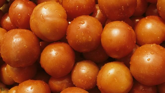 Rau quả, trái cây Thổ Nhĩ Kỳ nay không thể xuất khẩu sang Nga