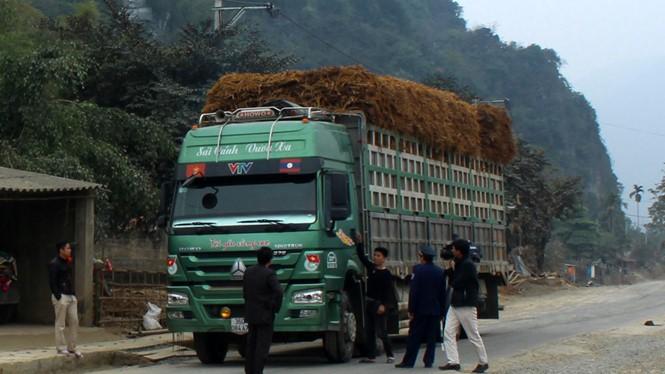 Trạm Thanh tra giao thông Đồng Tâm lơ là trong kiểm soát xe quá tải trọng - Ảnh: Hải Tần