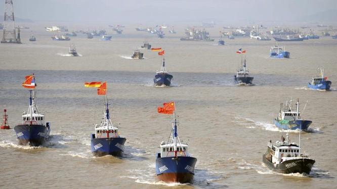 Hạm đội tàu cá Trung Quốc thường xuyên xâm phạm lãnh hải các nước láng giềng
