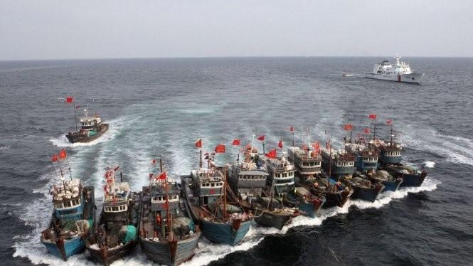 """""""Hạm đội"""" tàu cá của Trung Quốc hùng hổ kéo vào lãnh hải của các nước khác với sự bảo kê của các tàu hải cảnh"""