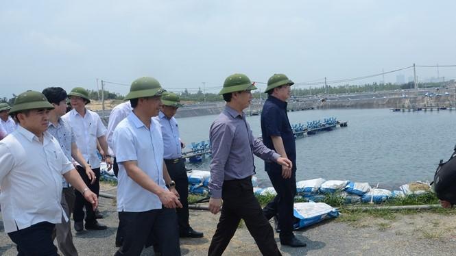 Phó thủ tướng Trịnh Đình Dũng thị sát tình hình cá biển chết tại Hà Tĩnh
