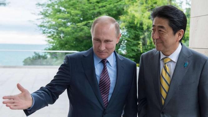 Quan hệ Nga-Nhật đang có dấu hiệu cải thiện, ông Putin dự kiến thăm Nhật Bản vào tháng 12 tới