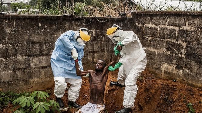 Bức ảnh này được thực hiện bởi Pete Muller, ghi lại người đàn ông nhiễm vi rút Ebola ở Freetown, Sierra Leone điên cuồng hoảng loạn cố thoát khỏi sự cô lập ở Trung tâm điều trị Hastings Ebola. Anh ta đã bị các nhân viên giữ và đưa quay trở lại trung tâm t