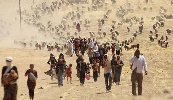 ISđã tạo ra một cuộc khủng hoảng người tị nạn Yazidi ởIraq. (Ảnh: Alalam)