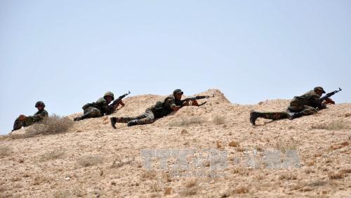Binh sĩ Syria giao tranh với IS tại khu vực đông bắc thành phố cổ Palmyra. Ảnh: AFP/TTXVN