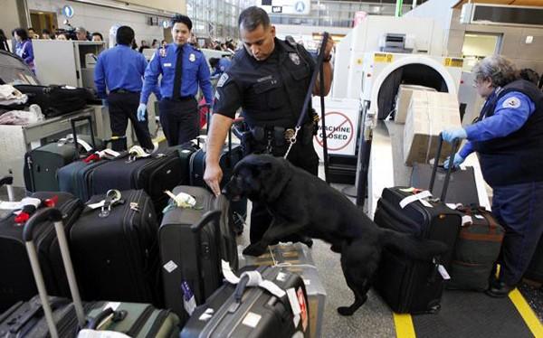 Nhân viên an ninh kiểm tra hành lý của hành khách tại sân bay ở Los Angeles. Ảnh: AP.
