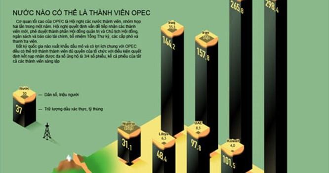 Toàn cảnh về cấu trúc sức mạnh của OPEC