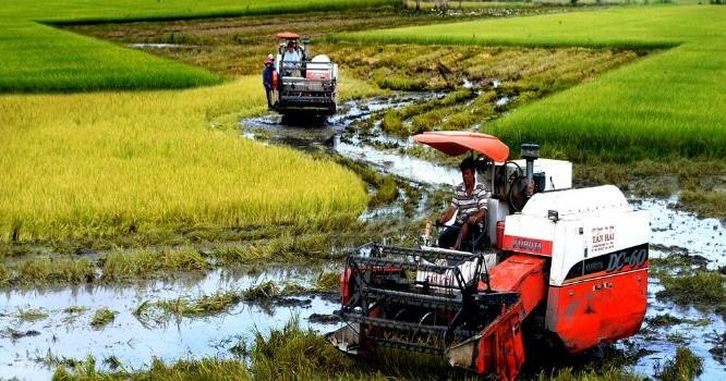 Vay vốn ODA: Việt Nam học được gì từ Trung Quốc, Malaysia?