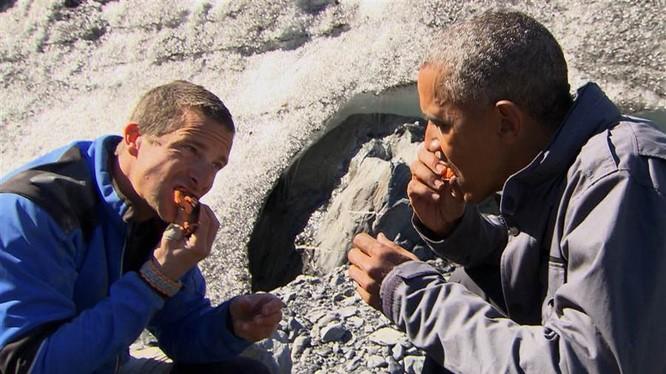 Ông Obama ăn thức ăn thừa của gấu trong show thực tế