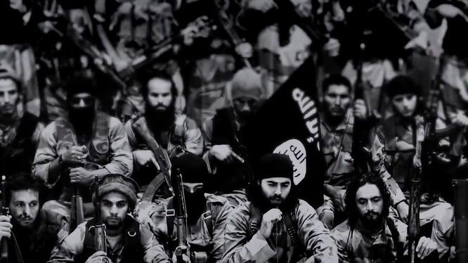 Trong 3 tuần, IS mất hàng trăm tay súng IS