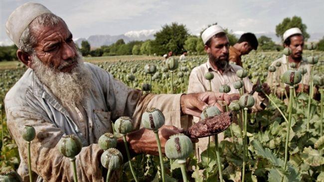 Video: Afganhistan – thị trường và chiến tranh thuốc phiện