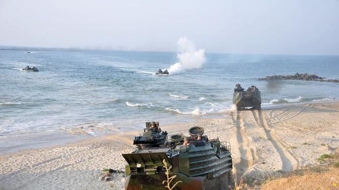 Xe thiết giáp đổ bộ của Lính thủy đánh bộ Mỹ trong cuộc diễn tập Sea Breeze 2016 của khối NATO trên bờ biển Odessa