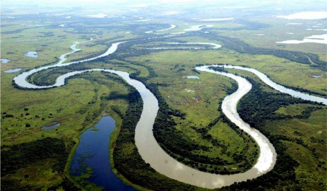 Khu thiên nhiên hoang dã Pantanal - bang Mato Grosso do Sul - Brazil