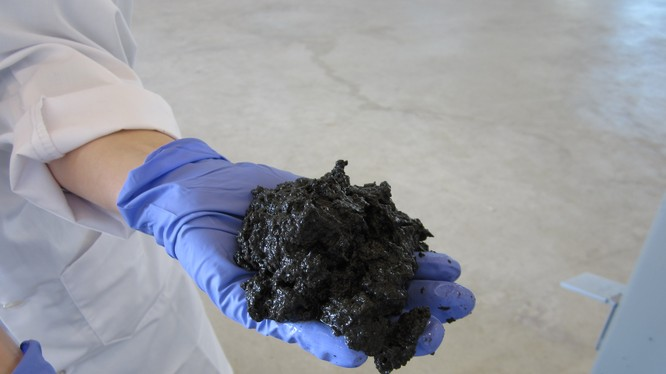 Bùn chất thải (ảnh minh họa)