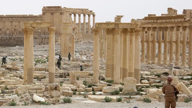 Thành phố cổ Palmyra một lần nữa đối mặt với nguy cơ bị tàn phá