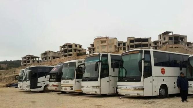 Xe buýt chở các chiến binh còn lại đầu hàng về tỉnh Idlib