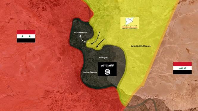 Phân bổ lực lượng trên chiến trường bờ đông sông Euphrates tính đến ngày 23.01.2019. Ảnh minh họa: South Front.