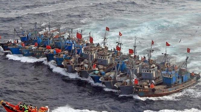 Cảnh sát biển Hàn Quốc kiên quyết tấn công hành vi đánh bắt phi pháp và chống trả bạo lực của tàu cá Trung Quốc. Ảnh: Guancha.