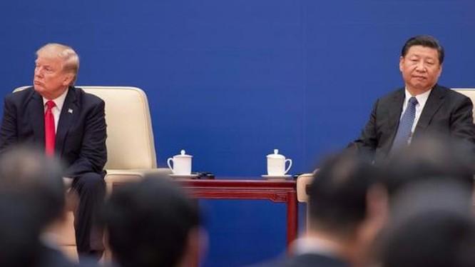 Tổng thống Mỹ Donald Trump và Chủ tịch Trung Quốc Tập Cận Bình. Ảnh: DW.