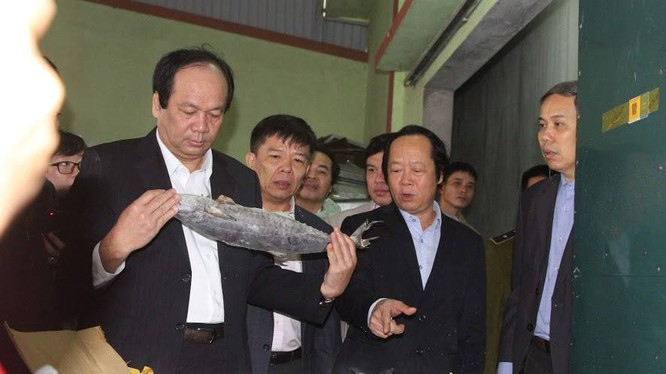 Bộ trưởng Mai Tiến Dũng kiểm tra hải sản tồn kho tại Quảng Bình