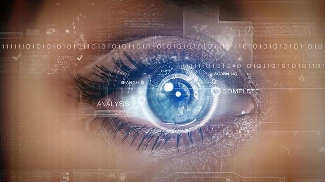 Việc thu thập và xác minh các hình ảnh mống mắt cũng tương tự như chụp ảnh, chỉ mất vài giây.