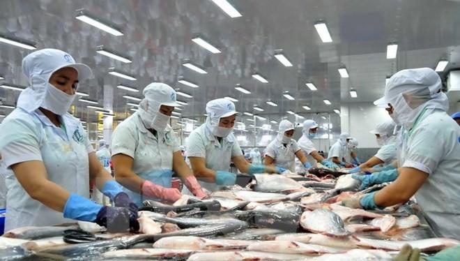 Vụ kiện cá da trơn năm 2013 đã khiến Việt Nam thiệt hại hàng tỷ USD.