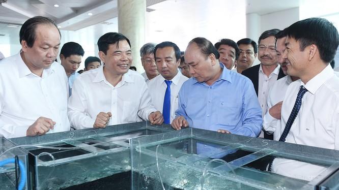 Thủ tướng thăm một mô hình nuôi tôm