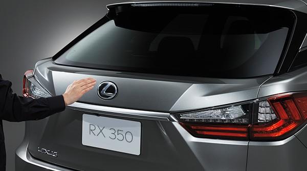 Xe Luxus RX được đăng ký biển số thành xe PEUGEOT (Ảnh minh họa)