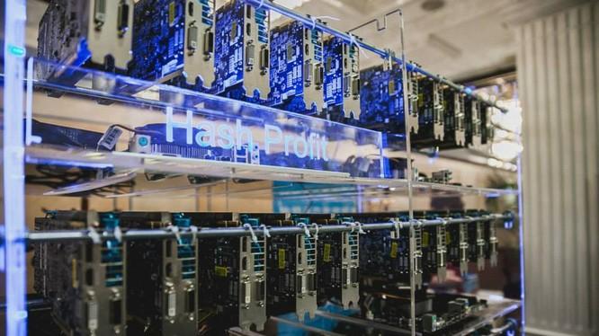 'Chăn trâu thuê' để đào Bitcoin giá 1,7 triệu/tháng ở Sài Gòn
