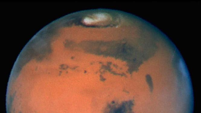 Bề mặt của sao Hỏa có chứa độc tố khiến vi khuẩn cũng không thể tồn tại được.