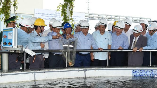 Thủ tướng thị sát khu xử lý môi trường của Formosa. Ảnh: VGP/Quang Hiếu