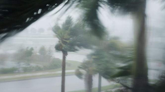 Sức mạnh của siêu bão Irma. Nguồn Dailymail.