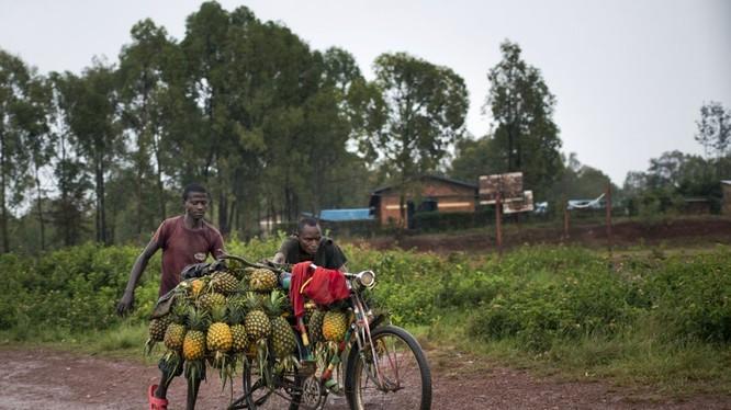 Khoảng 95% đường sá tại châu Phi bị xuống cấp mỗi năm. Điều này khiến cho người dân tại khu vực khó tiếp cận với nguồn cung cấp y tế mỗi khi cần thiết.