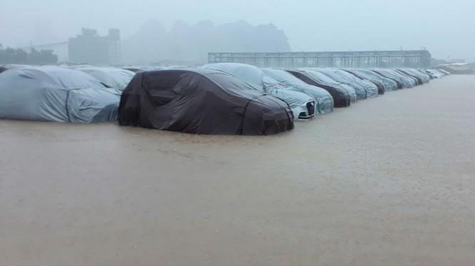 Hình ảnh ghi nhận hàng loạt xe Grand i10 bị ngập tại nhà máy Hyundai ở Gia Viễn, Ninh Bình