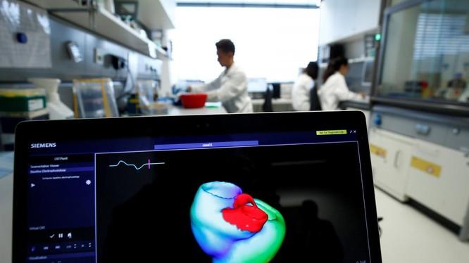 Một màn hình hiển thị hình ảnh ba chiều về trái tim con người tại Viện Tim mạch tính toán tích hợp Klaus-Tschira, khoa Bệnh viện Đại học Heidelberg (Universitaetsklinikum Heidelberg), tại Heidelberg, Đức, ngày 14/8/2018. Ảnh: REUTERS