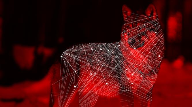 Hãy xem các thuật toán AI như động vật để hiểu chúng. Ảnh: Futurism.