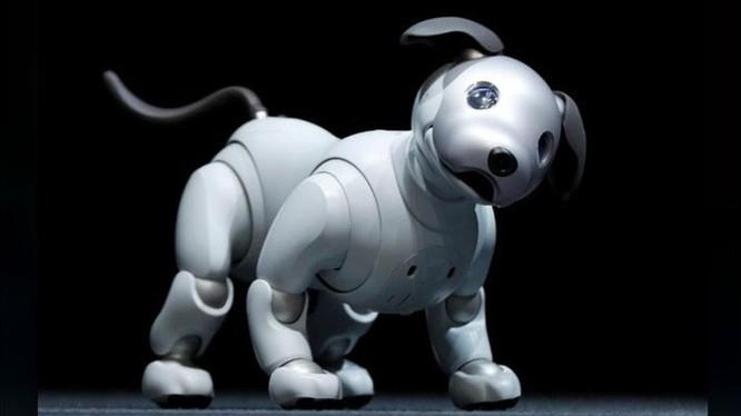 Chó Aibo, sản phẩm sáng tạo độc đáo của Sony. Ảnh: Sony.