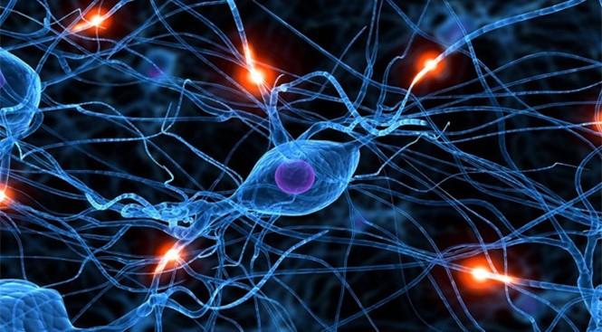 Mạng lưới nơron nhân tạo giúp máy móc hoạt động giống não người hơn. ẢNH: TOWARDS DATA SCIENCE